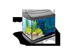 Akvárium & kellékek